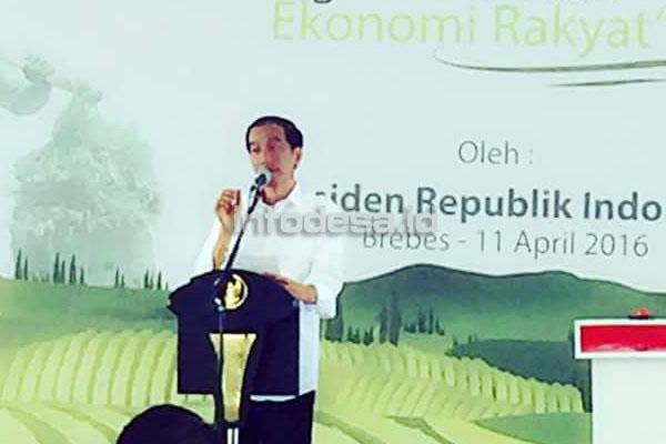 Presiden Kenalkan Sistem Pemasaran On Line Petani